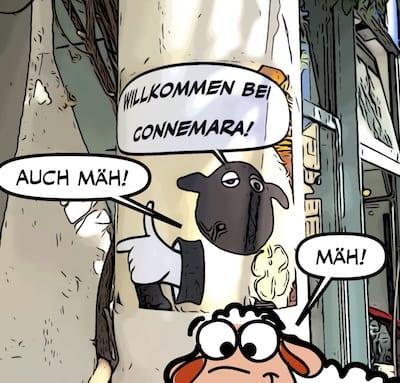 Connemara Conny mit Schaf
